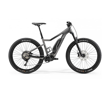 E BIG TRAIL 800 - 2019